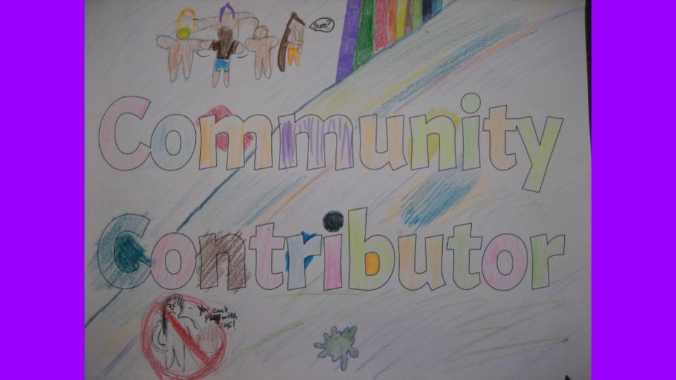 Community Contributor