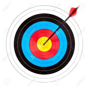 6927374-archery-target-with-arrow-in-the-bullseye.jpg