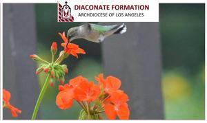 diaconation.jpg