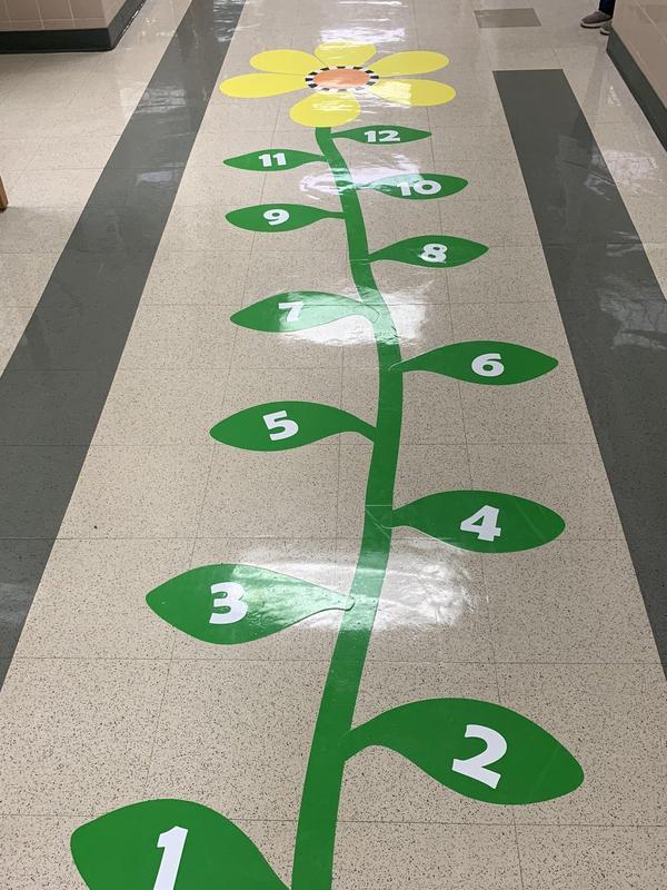Flower Sensory Path