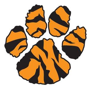 tiger print.jpg