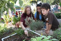 Students discovering nature in raised garden beds