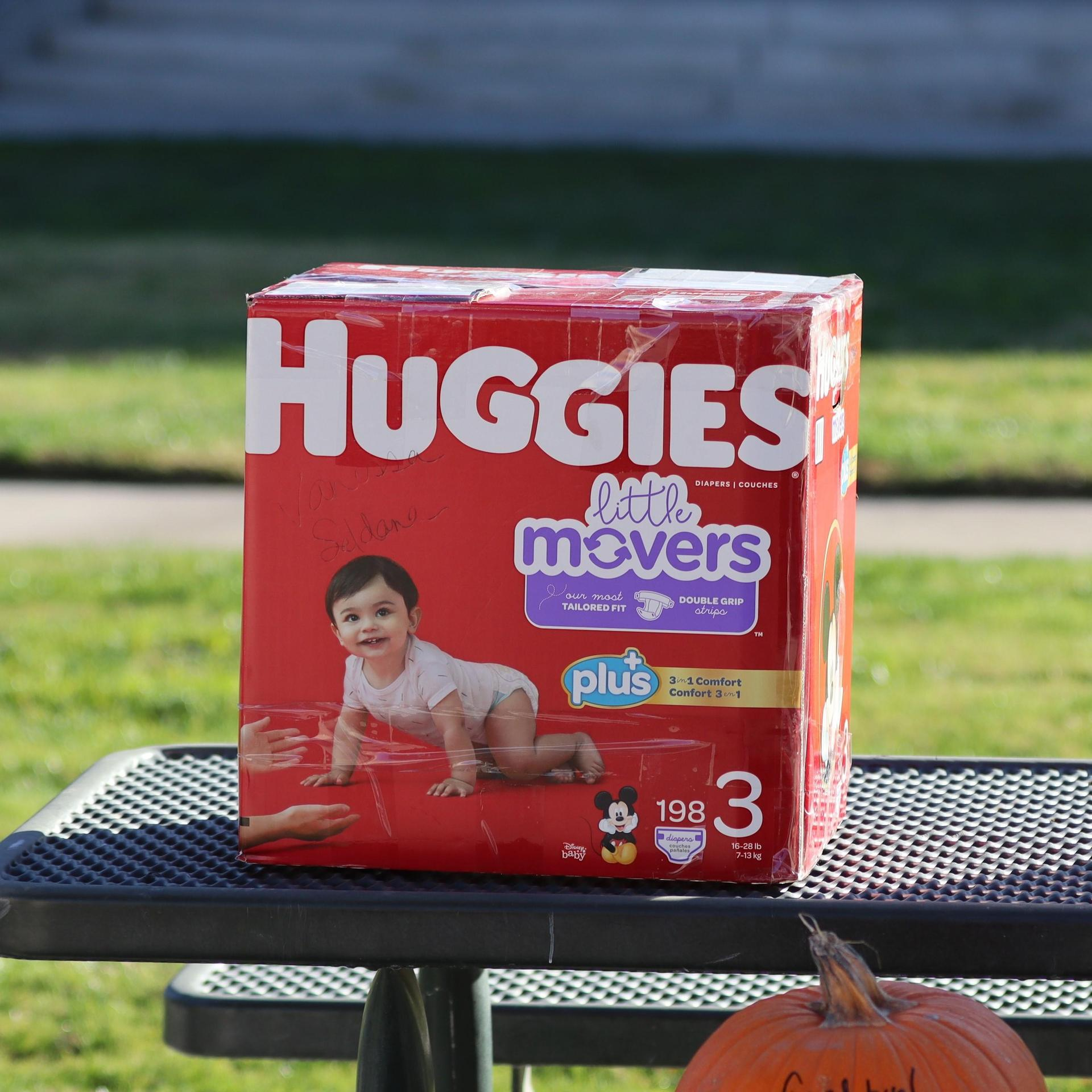Vanessa Saldana Lopez's Entry 'Huggies' Pumpkin Before Being Dropped.