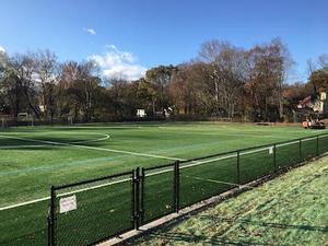 Library field photo