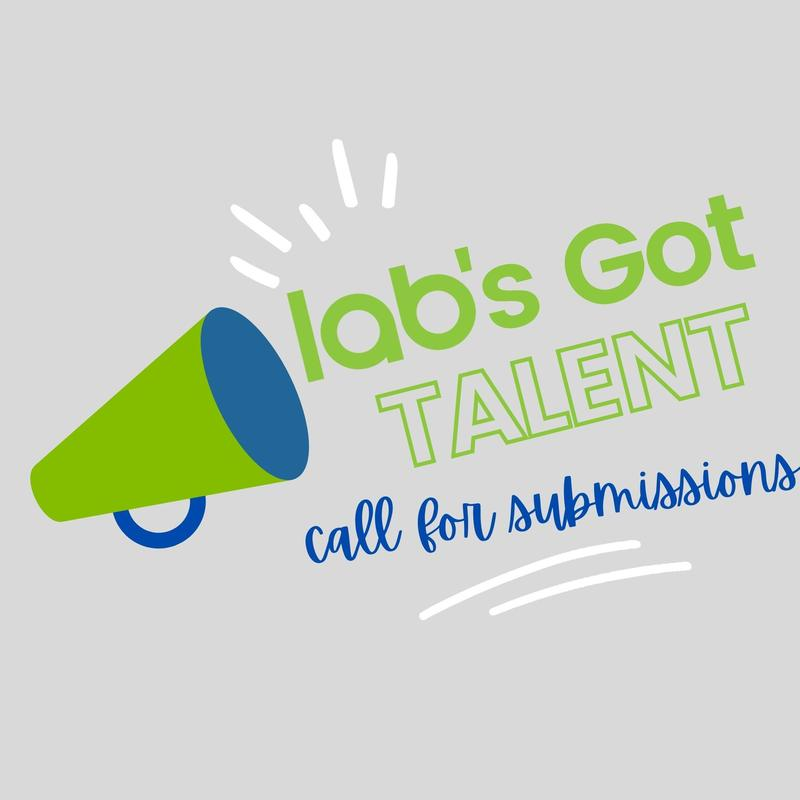 Lab's Got Talent! Featured Photo