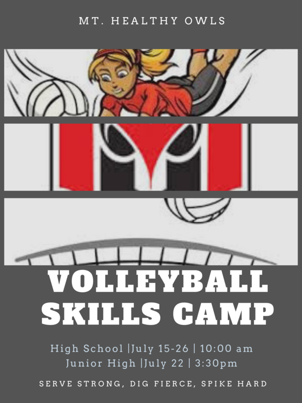 lady's volleyball camp in july