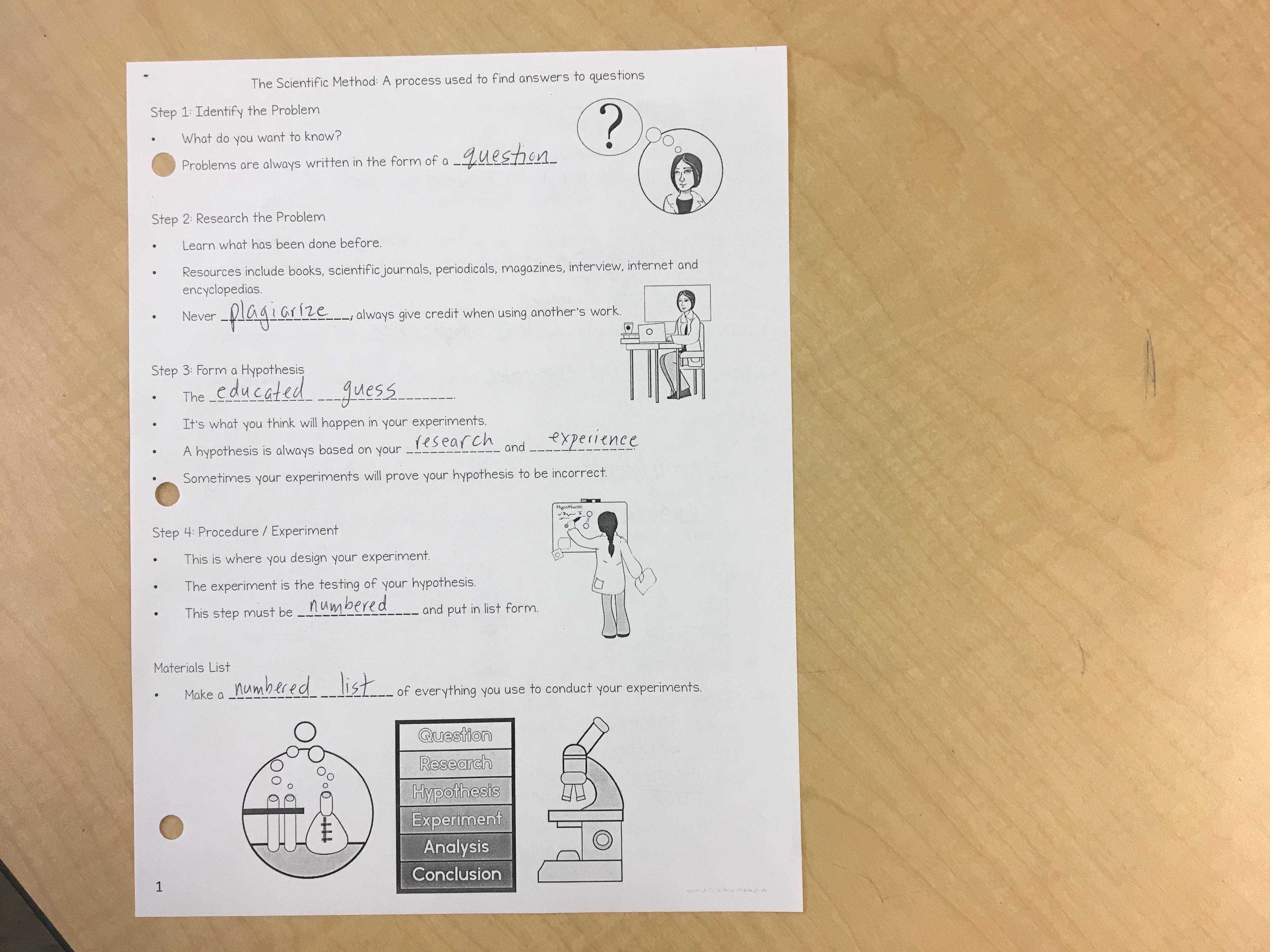 Quiz Over The Microscope Answers - Micropedia