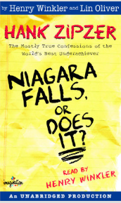 Niagara Falls.  Or Does It?