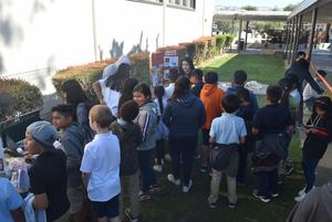 Science Day  2018 pic 1