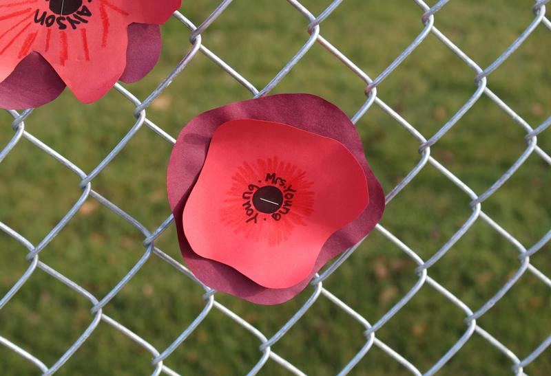 Hand made red poppies by cottonwood third grade students