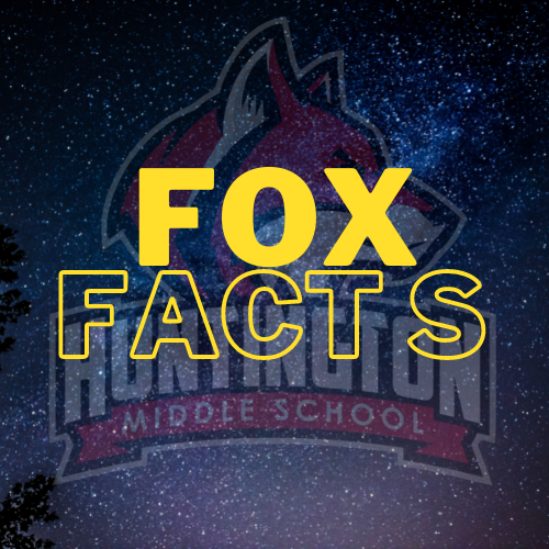 Fox Facts Featured Photo