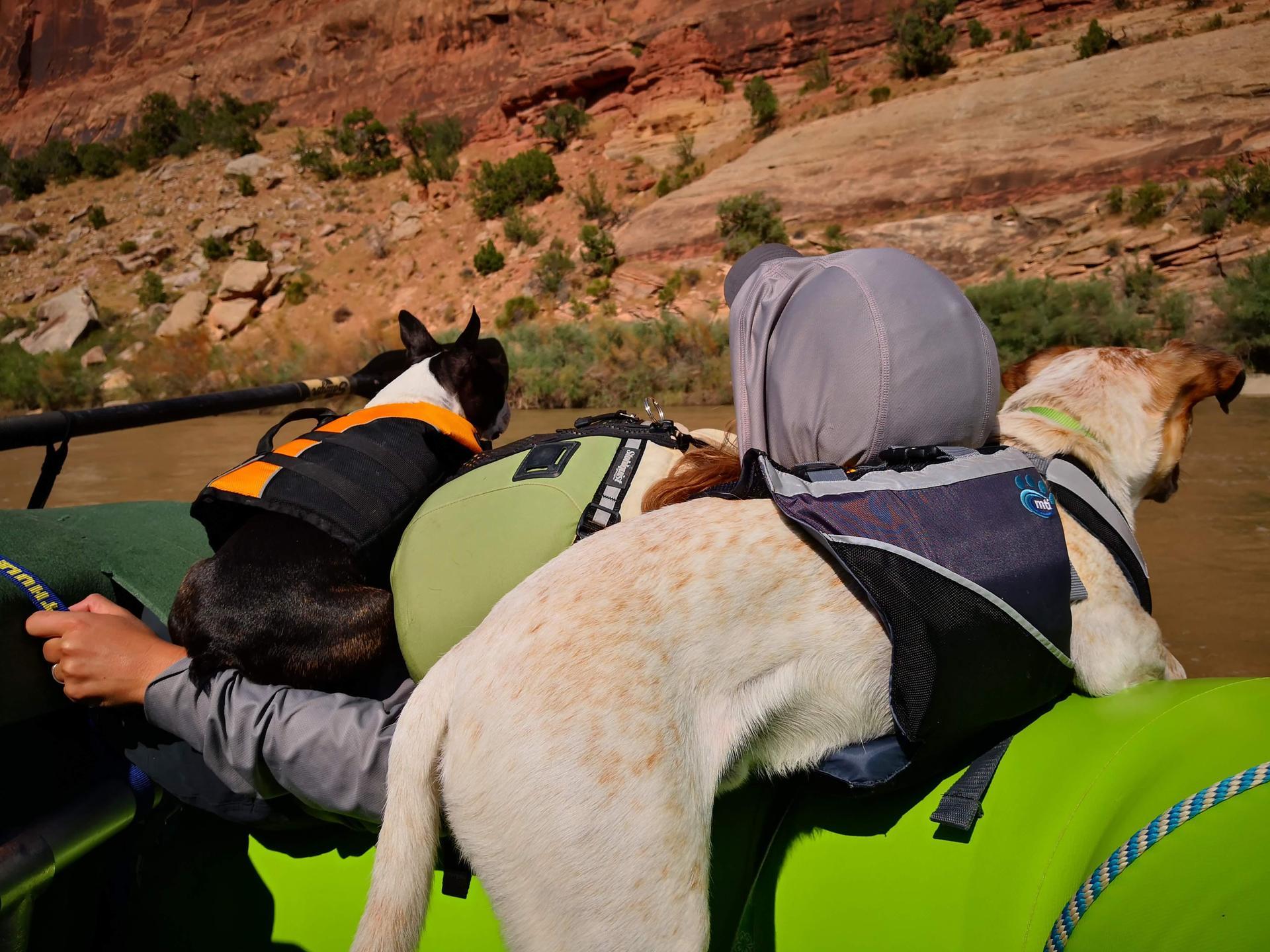 Ruby Horsethief Canyon