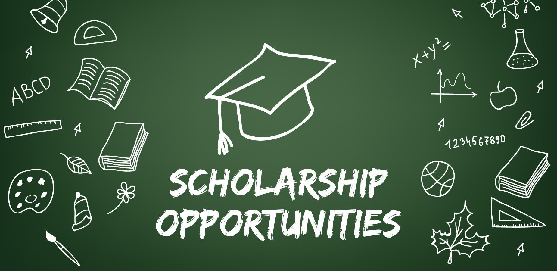 Scholarship page on PUSD