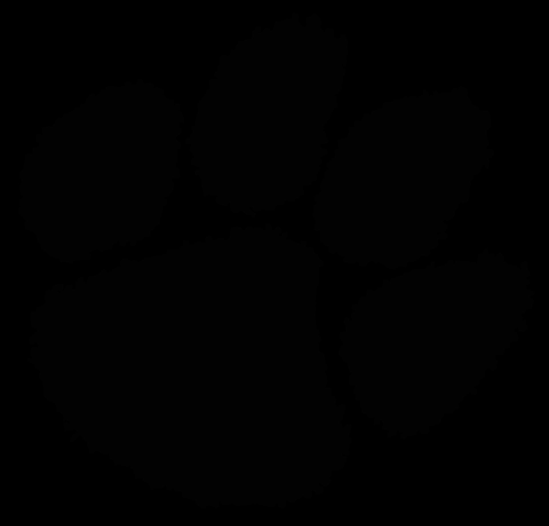 black cougar paw