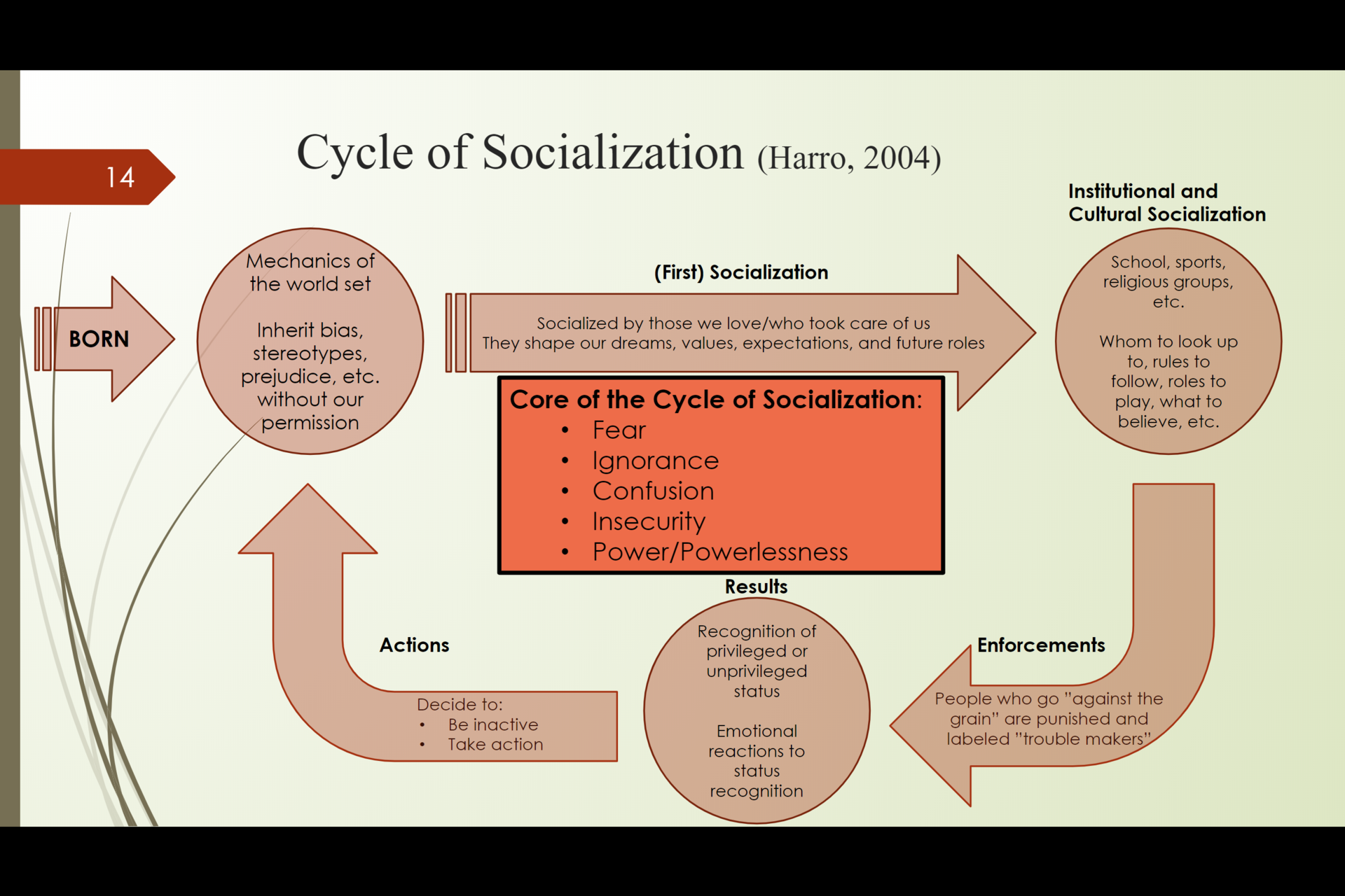 Cycle of Socialization (Harris, 2004)