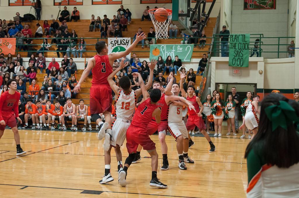 Bird Bowl Basketball