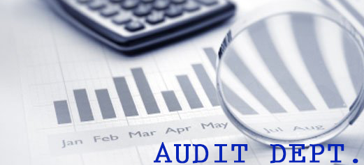 audit deapartment