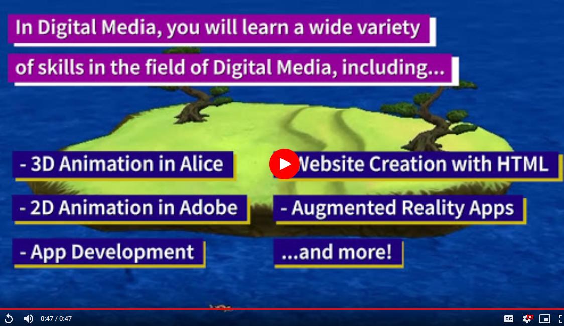 Digital Media video link