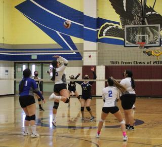 Maywood Academy's Girl's Volleyball Team