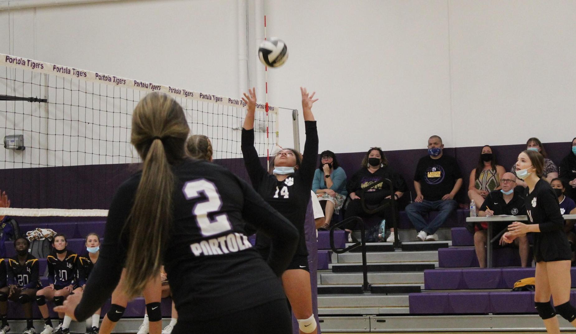PHS Varsity Volleyball 2021
