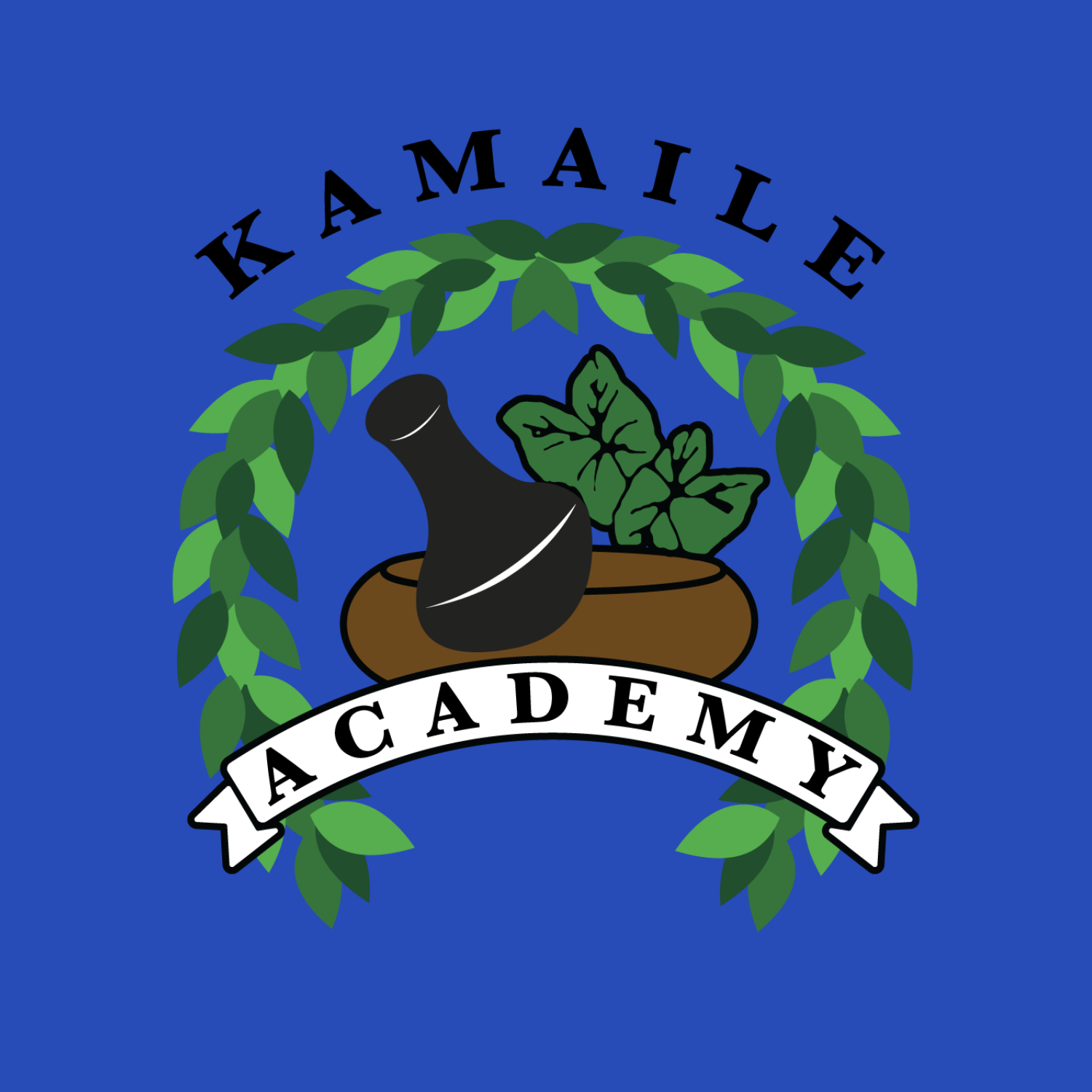 KAMAILE ACADEMY WILL HAVE 100% DISTANCE LEARNING TO START THE SCHOOL YEAR Image