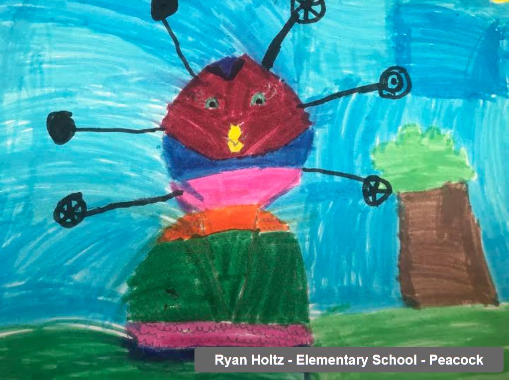 Ryan Holtz - Elementary School - Peacock