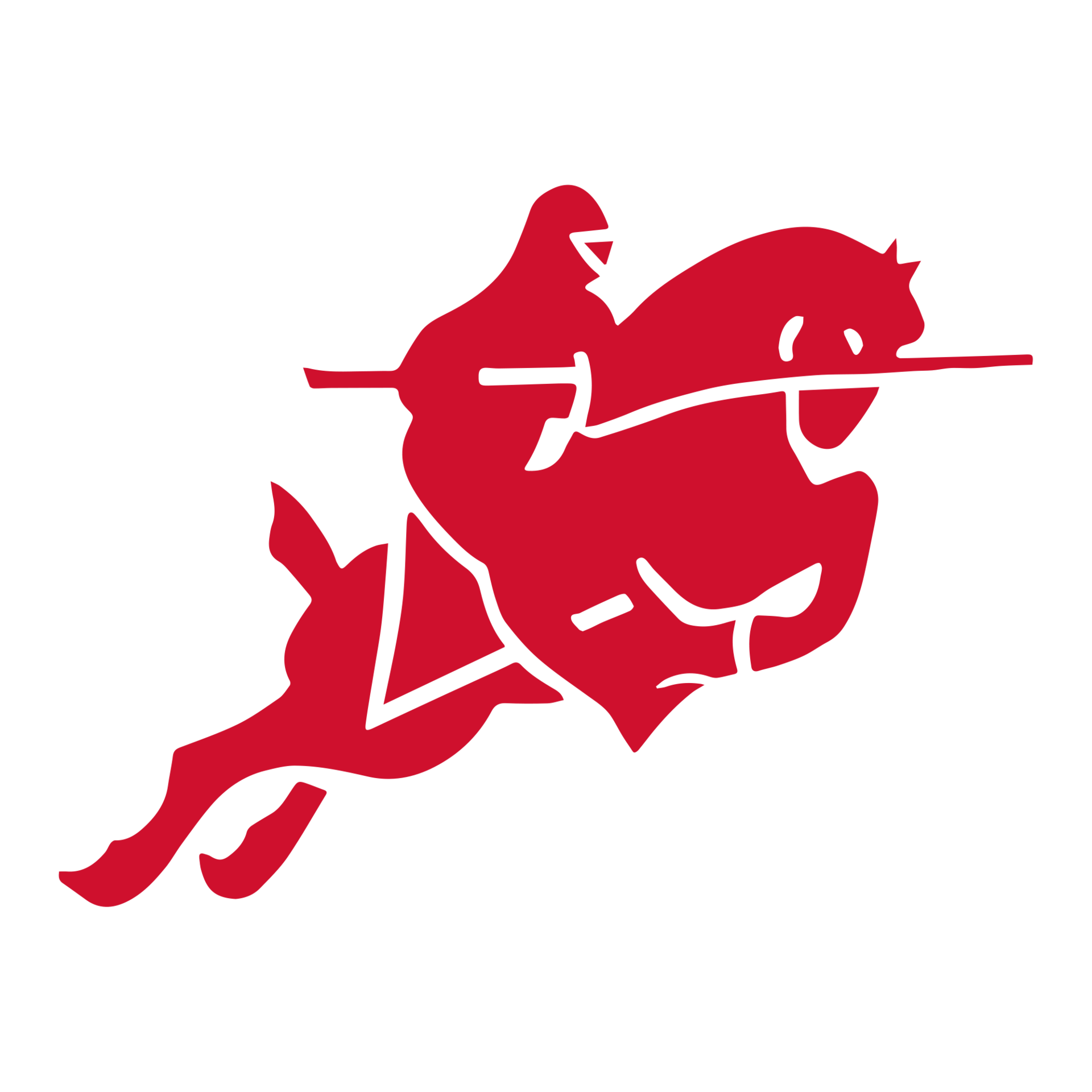Red Raider Logo