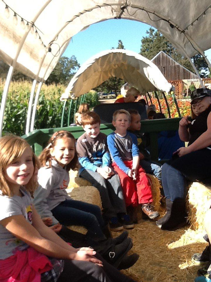 Pumpkin Patch Field Trip Wagon Ride