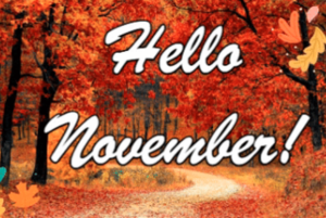 hello nov picture