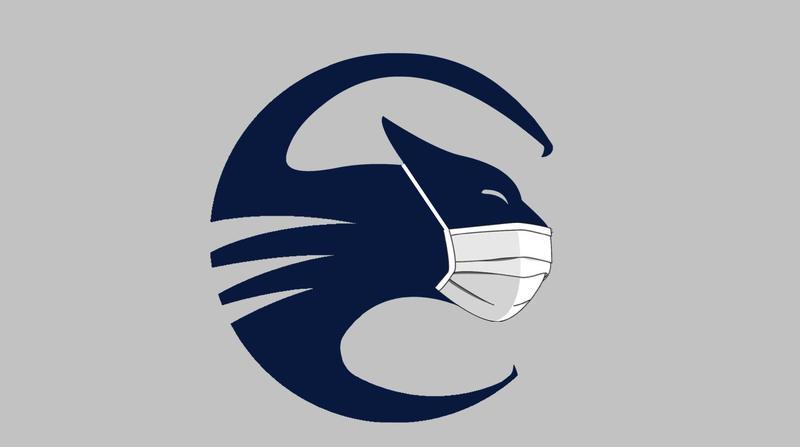 Masked Cougar
