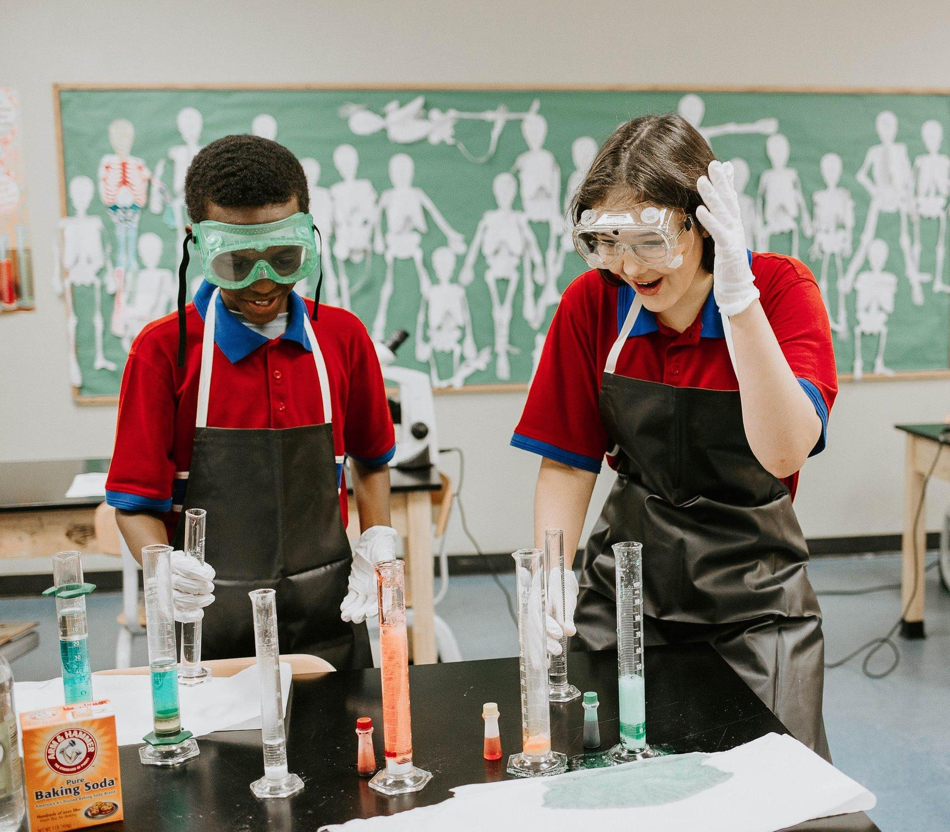 Students working in Science and Technology