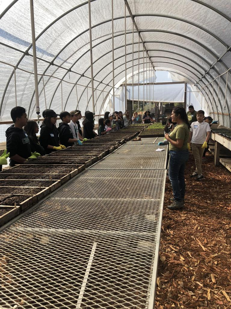 Students standing in a greenhouse.