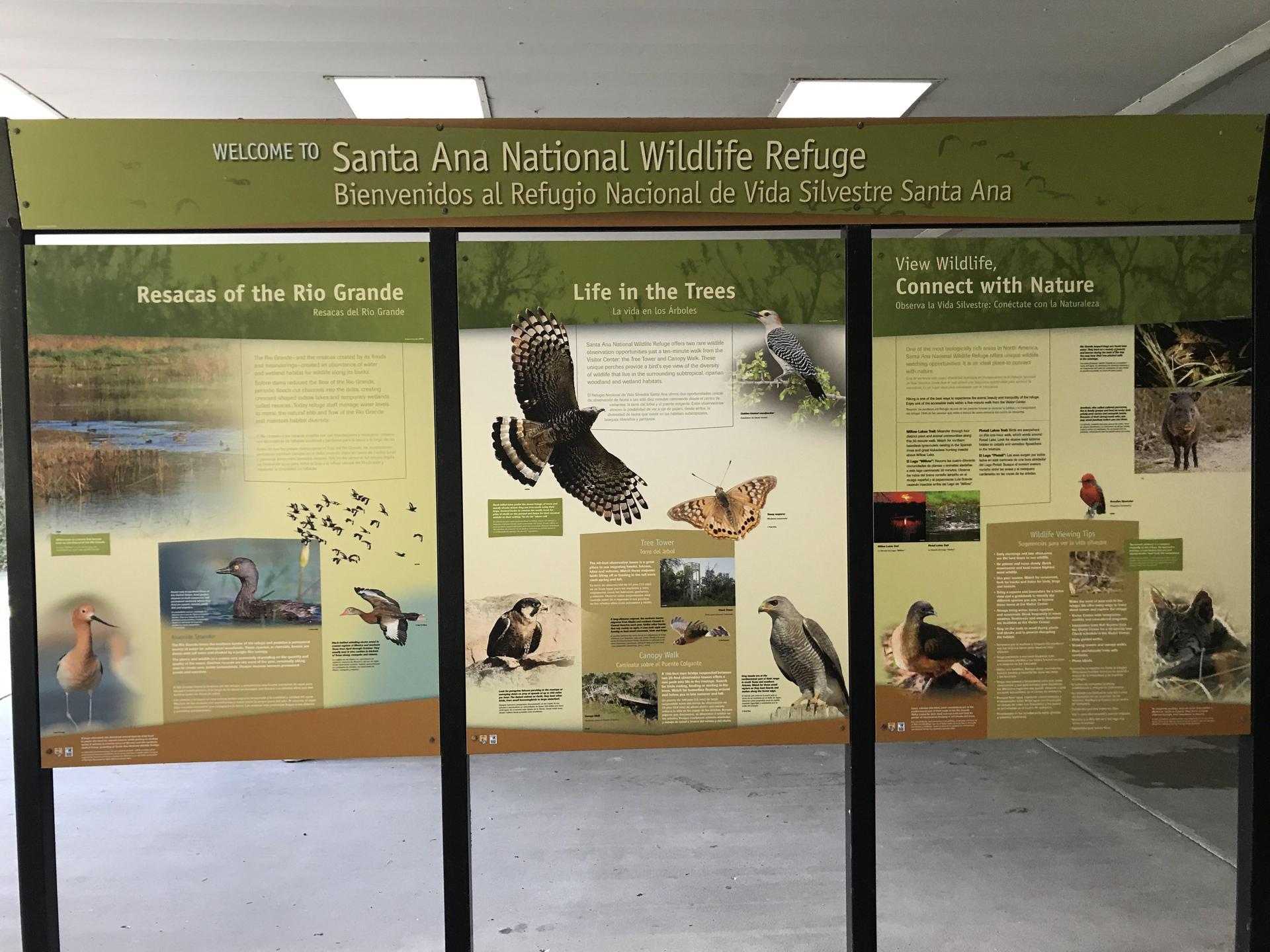 Santa Ana Wildlife Refuge Display Board