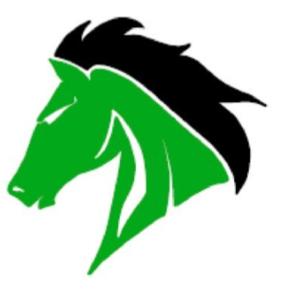 WSHS logo.PNG