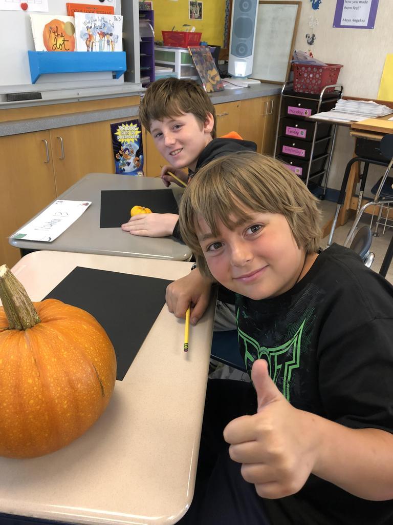 Boys sketching pumpkins