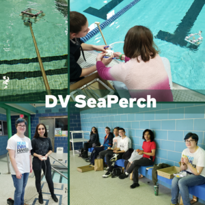 DV SeaPerch Team at the pool working with their ROV.