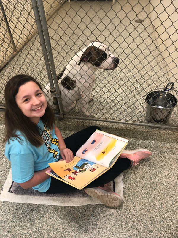 Jr BETA club reads to shelter animals Featured Photo