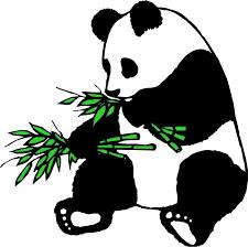 Panda Express fundraiser 01/29/21 Recaudacion de fondos restaurant Panda Express Thumbnail Image