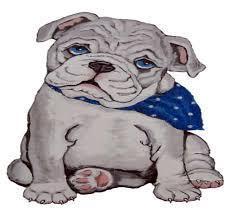 LES pup