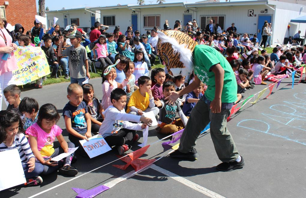 A student in a tiger head gives students high fives.