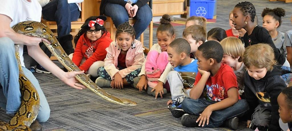 learning about snakes during reptile presentation