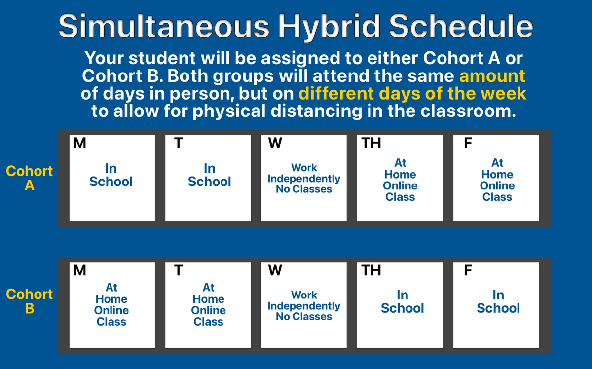 simultaneous hybrid learning sample