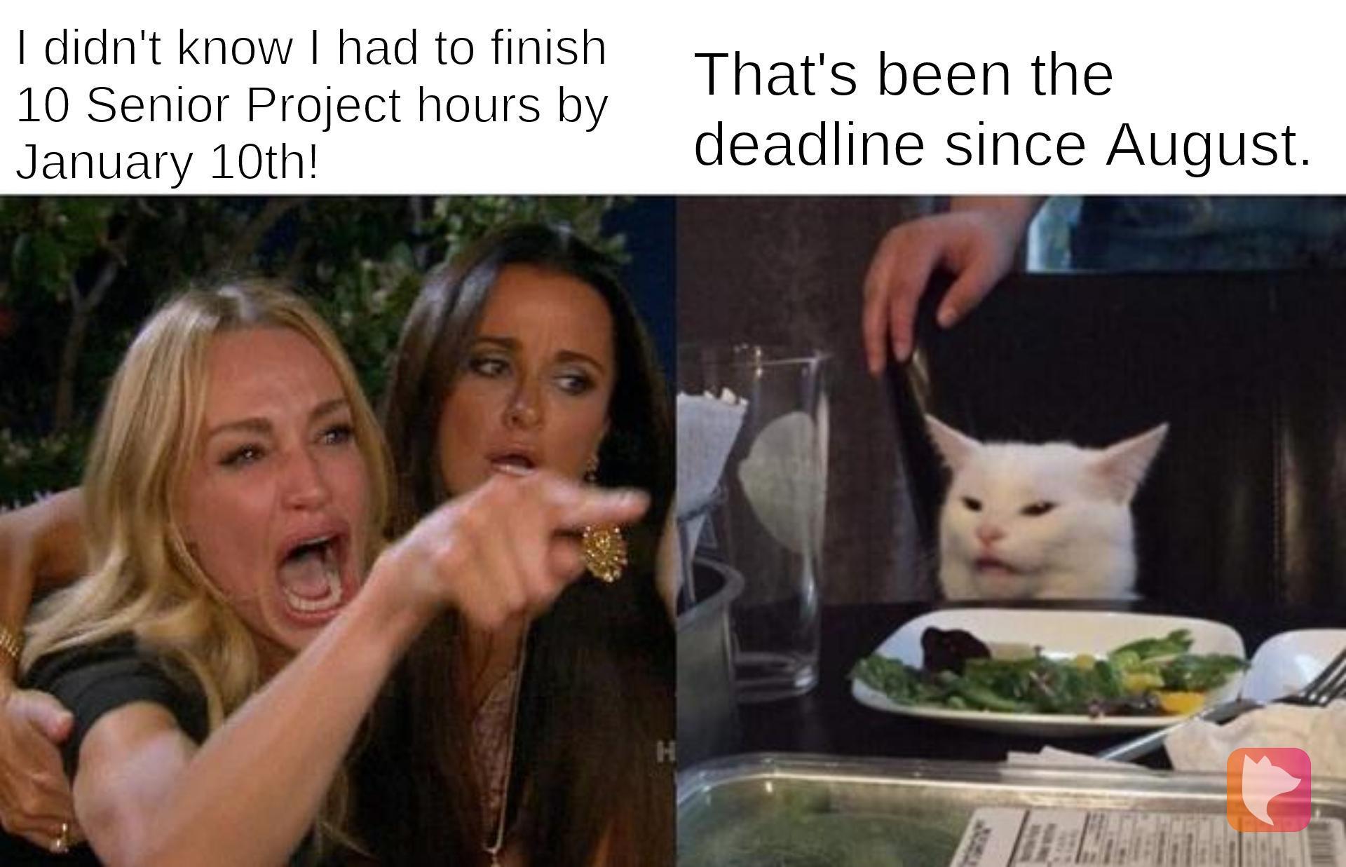 Due Date Meme