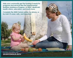 census graphic.jpg