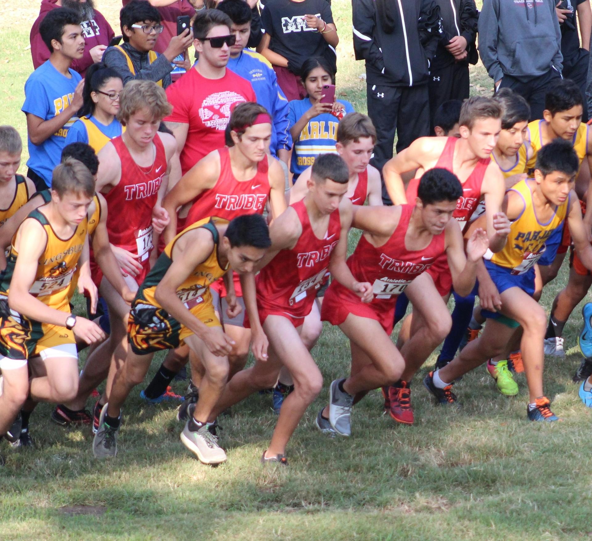 Cross Country athletes running near Kingsburg