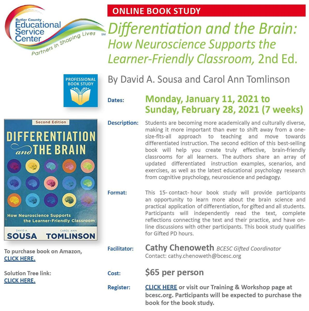 Differentiation and the Brain Flyer Link