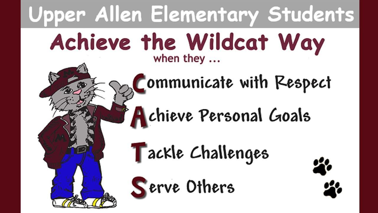 CATS - Wildcat Way