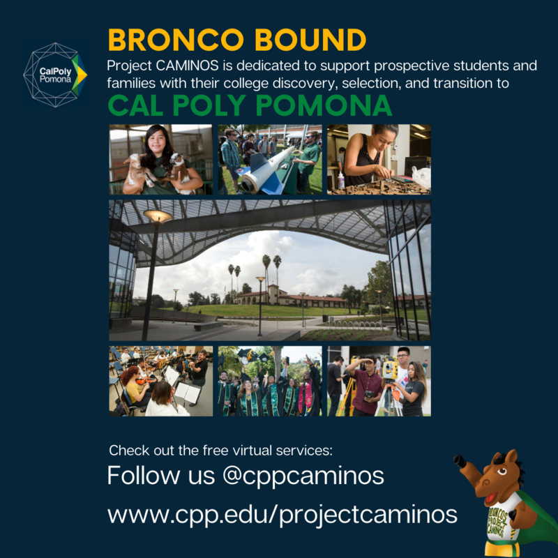 Bronco Bound