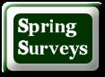 Spring Survey Button