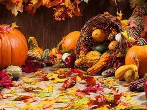 Thanksgiving Break: November 19th - November 23rd Thumbnail Image